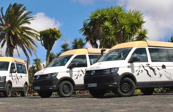 Excursión en Minibús desde Lanzarote a Fuerteventura